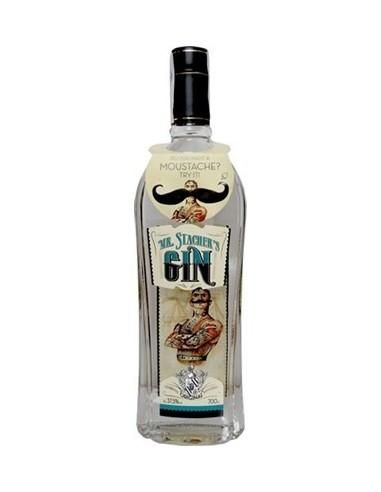 GIN MR STACHERSS