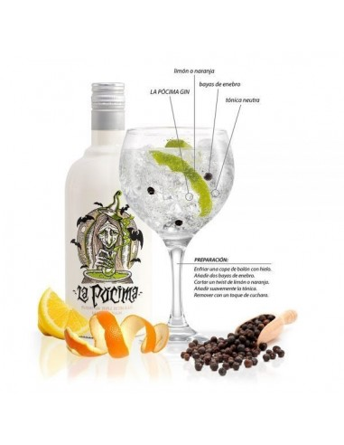 Gin Kanpur